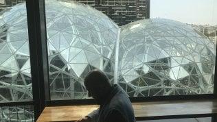 Nel cuore di Amazon tra cani, computer e piante carnivore: ecco il nuovo regno di Jeff Bezos